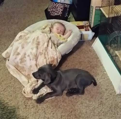 gunner-with-baby